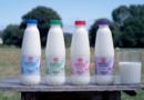 Lidl, primer supermercado en España con el 100% de su leche fresca con doble certificado: de pastoreo y de bienestar animal