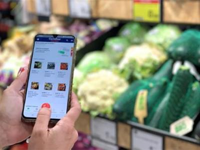 Carrefour y lola market: Acuerdo para ofrecer servicios de personal shopper online