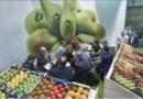 Optimismo ante la próxima edición presencial de Fruit Attraction – NyN nº 233 julio-agosto 2021
